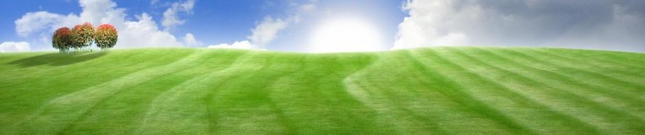 cropped-spring_landscape_1920x120011.jpg